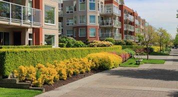 HOA and apartment complex landscape enhancement services san jose