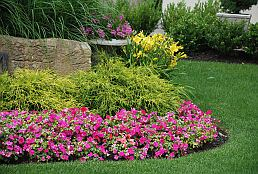 seasonal-flower-plantings-fremont-ca