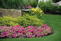seasonal-flower-plantings-fremont-ca