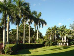 estate landscaping